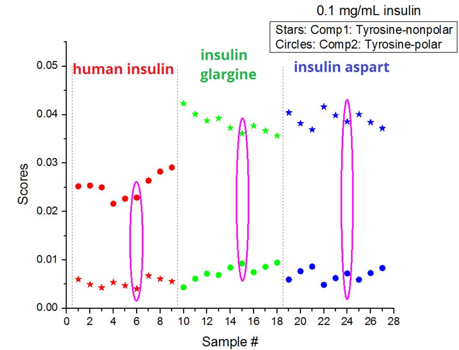 Insulin Structure and Stability Assessment