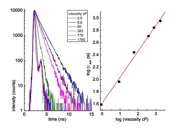 Elucidating Local Viscosity Using Fluorescence Lifetime Measurements