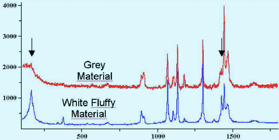 Polymorphy in pharmaceuticals by Raman Spectroscopy