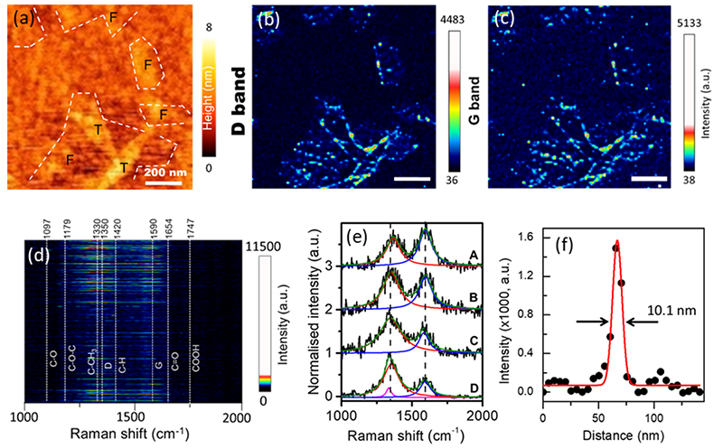 Correlated TERS and KPFM of Graphene Oxide Flakes
