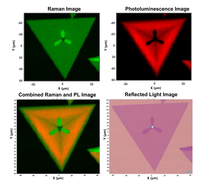 Combined Raman and Photoluminescence Imaging of 2D WS2