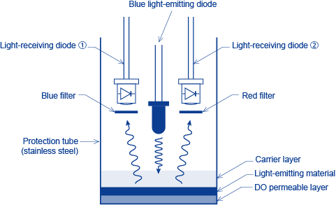 Figure 4 Schematic Diagram of a DO Detector for the Fluorescence Method