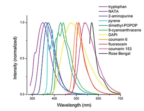 Horiba Steady State And Time Resolved Fluorescence