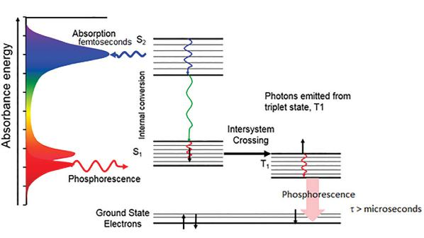 Horiba principles and theory of fluorescence spectroscopy phosphorescence measurements use a longer lived pulsed source such as a xenon flash lamp ccuart Image collections