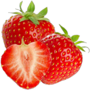 Quick Nutrient Analysisin StrawberryProduction image-01