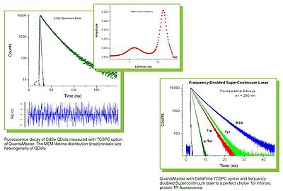 The QuantaMaster series can be easily enhanced with TCSPC fluorescence lifetime capabilities.
